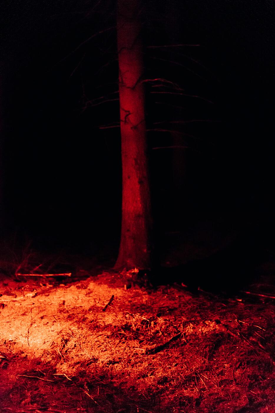 Büchsenlicht Fotohof Dokumentarfotografie Milan Soremski Soremski Design, Fotografie und Film